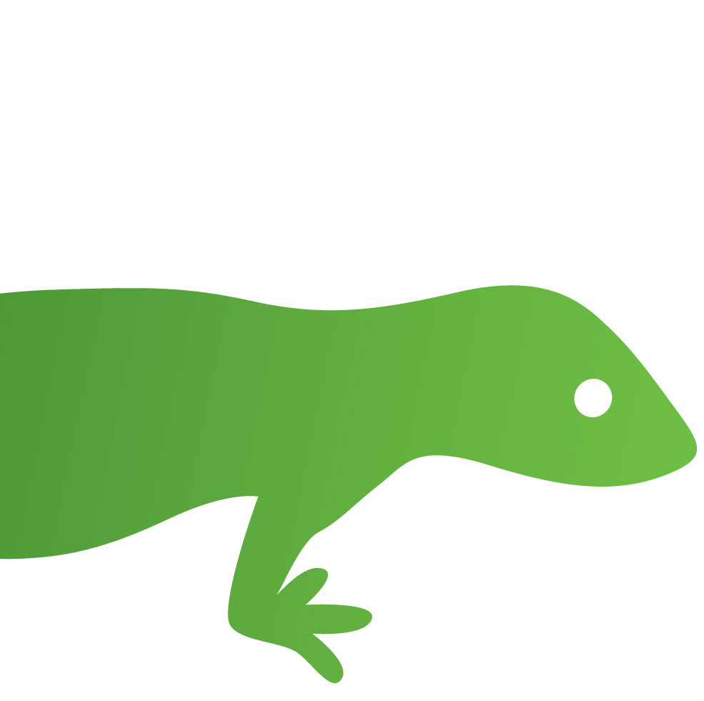 Green Gecko Digital - Web Design & SEO
